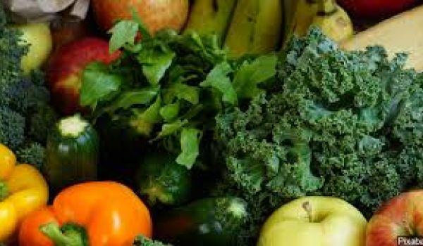 USDA updates plant biotechnology regulations