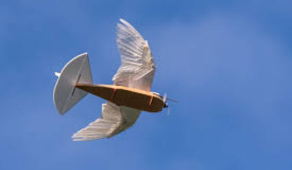 PigeonBot, a drone that uses real feathers to fly