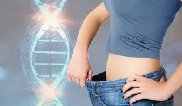 """Gene for """"Thinness"""" Identified that May Help to Resist Weight Gain"""